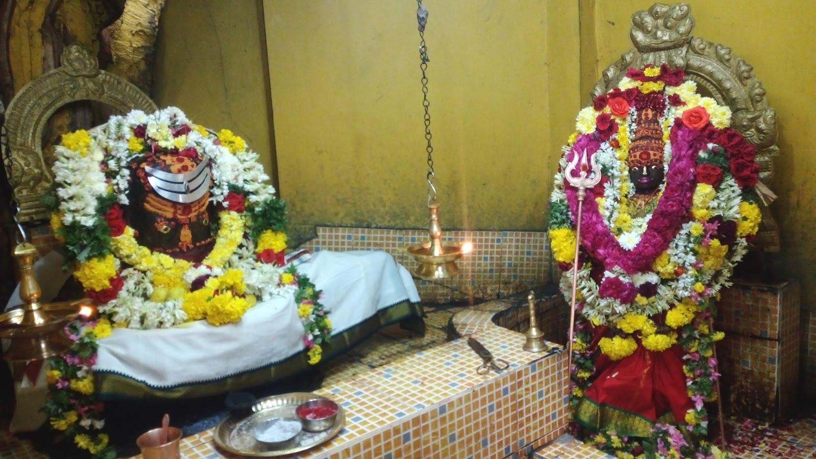 ஸ்ரீ அகத்தீஸ்வரர் ,ஸ்ரீ அகிலாண்டீஸ்வரி ஸ்தல வரலாறு பட்டுக்கோட்டை
